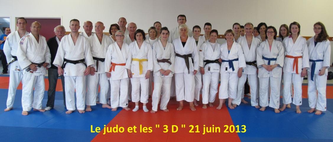 le judo et les 3d 21 06 2013